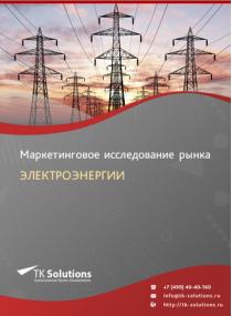 Российский рынок электроэнергии за 2016-2021 гг. Прогноз до 2025 г.