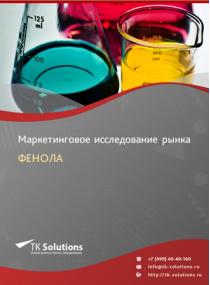 Российский рынок фенола за 2016-2021 гг. Прогноз до 2025 г.