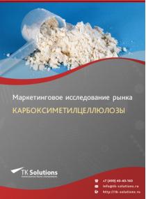 Российский рынок карбоксиметилцеллюлозы за 2016-2021 гг. Прогноз до 2025 г.
