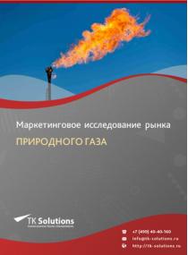 Рынок природного газа в России 2015-2021 гг. Цифры, тенденции, прогноз.