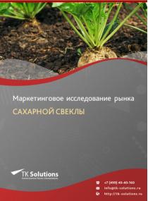 Рынок сахарной свеклы в России 2015-2021 гг. Цифры, тенденции, прогноз.