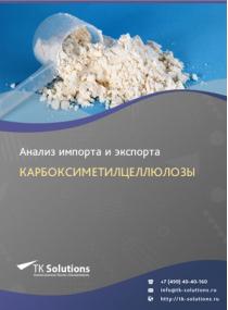 Анализ импорта и экспорта карбоксиметилцеллюлозы в России в России 2021, 2020 2016-2020  гг.