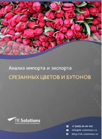 Анализ импорта и экспорта срезанных цветов и бутонов в России в России 2021, 2020 2016-2020  гг.