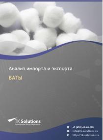 Анализ импорта и экспорта ваты в России за 2016-2020  гг.